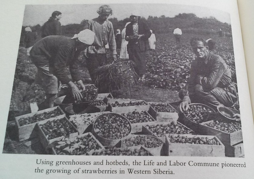 Life and Labor